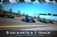 9 Go-Kart & 1 Race track