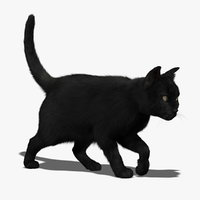 3d ma cat black fur animations