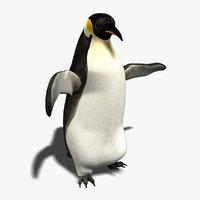 3d penguin animation model