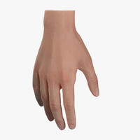 Basic Hand Rigged