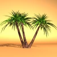 palm max