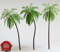 palm trees 3ds