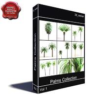 palms vol1 3d model
