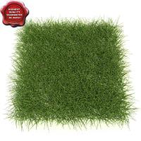 grass outdoor modelled 3d model