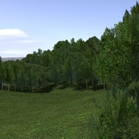 Forest lined grassy terrain