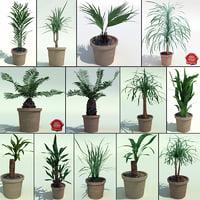 Interior Plants Collection V2