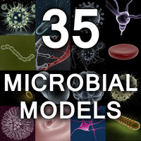 Microbiology Model Collection Set 1