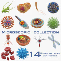 Microscopic Collection