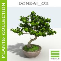 3d bonsai s model