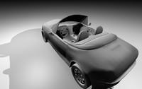 3d roaster black white model