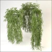 c4d hanging bamboo