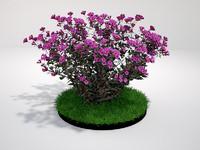 plant dark flowers 3d max