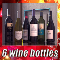 6 Wine Bottles Collection