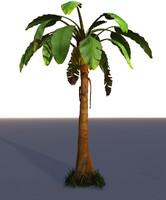 3ds max banana tree palm