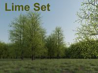 Lime Set