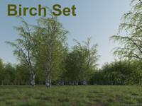 Birch Set