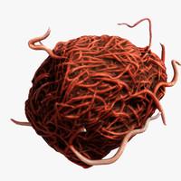 3d mumps virus model