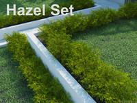 Hazel Set