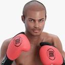 boxer 3D models