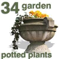 Cut Out - 34 garden plants