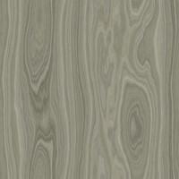 Gray Ash Wood Tileable Texture