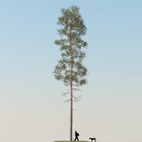 3ds max realistic pine tree