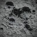 crater 3D models