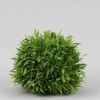 3d model small plant