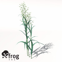 xfrogplants oats obj