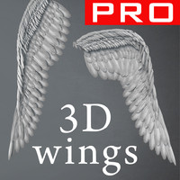 3d feather wings