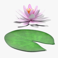 water lily 3d 3ds