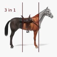 3ds horse black white