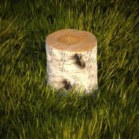 3d birch stump model