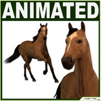 3d model of animations