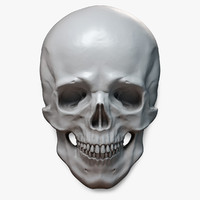 human skull relief 3d model